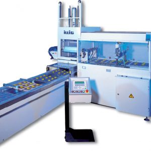 Blister / Skin / Vacuum Packaging Machines